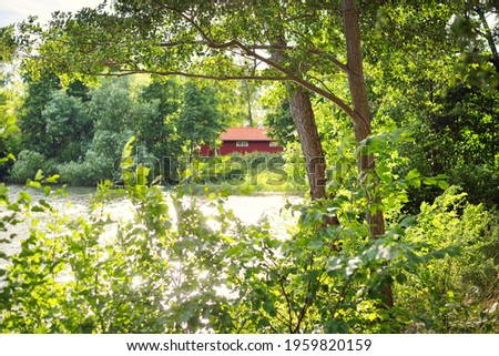 Village in a green forest. Traditional house colored with falu red dye, summer garden. Björkö island, lake Mälaren, Sweden. Pure nature, environment ecotourism, vacations. Panoramic view Stock fotó ©