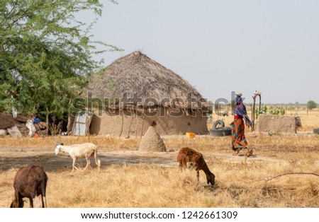 Village in desert and farming villagers people with traditional self-built house. Chad N'Djamena travel, located in Sahel desert and Sahara. Hot weather in desert climate on the Chari river. Foto stock ©