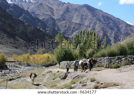 Village , Mountain Climb- Stok Kangri (6,150m / 20,080ft), India