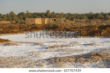 Village on Salt Flats, Siwa
