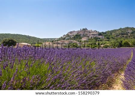 Village over lavender field