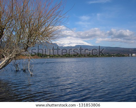 Villarrica Lake seen from the beach