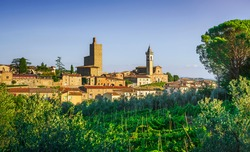 Vinci, Leonardo birthplace, village skyline vineyards and olive trees at sunset. Florence, Tuscany Italy Europe.