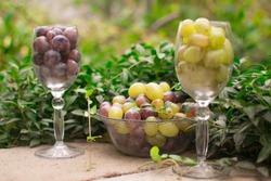 Vine grape naturemort