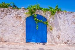 Vine hanging above the old greek wooden blue door