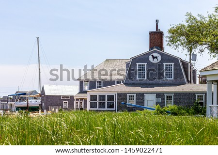 Vineyard Haven, Martha's Vineyard, MA, USA - June, 2019: Iconic black dog restaurant and tavern with field in foreground Photo stock ©
