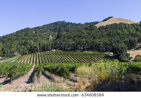Shutterstock Vineyard outside Santa Rosa California