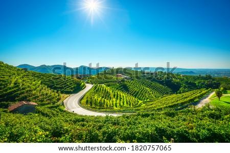 Vineyards and road. Prosecco Hills, Unesco World Heritage Site. Valdobbiadene, Veneto, Italy Foto stock ©
