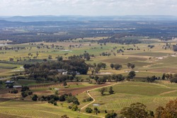 Vineyards and trees in the Hunter Valley in regional New South Wales in Australia