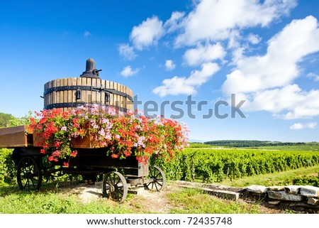 vineyards of Cote de Beaune near Pommard, Burgundy, France - stock photo