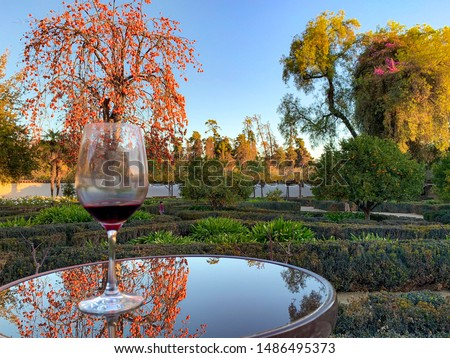 Vineyards Tour in the autumn with wineries, gardens and museum ending with a wine tasting - Viña Santa Rita is one of the oldest and most traditional vineyards in Chile #1486495373