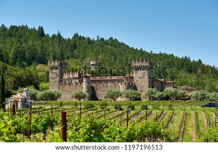Vineyards with castle in California, USA