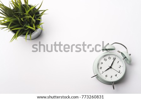 Vintage alarm clock in green pastel color on white background with green tree in pot