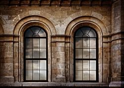 vintage arc windows