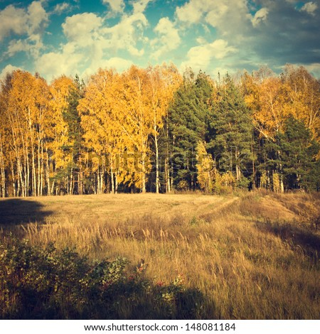 vintage autumn nature background
