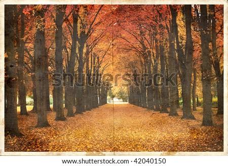 Vintage Autumn Park