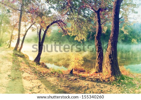 stock photo vintage autumn wood on the river bank fog over water 155340260 - Каталог — Фотообои «Природа, пейзаж»