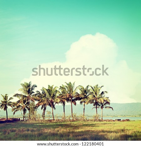 Vintage Beach Palms