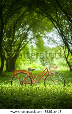 Vintage bicycle. bicycle in green grass. - Shutterstock ID 663516415