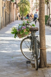 Vintage bicycle leaning against a tree with flowers in frontal basket on a street in Madrid