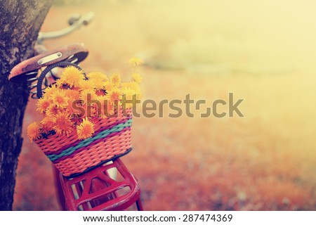 Vintage Bicycle with flowers on summer landscape background (toned picture)