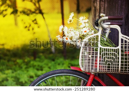 Vintage Bike  with flowers and Colorful Background  /summer background with bicycle (toned picture)