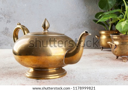 Vintage bronze tea pot and green plants in brass and copper vintage flower pots on a concrete background. Copy space for text.