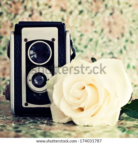 Vintage camera and rose