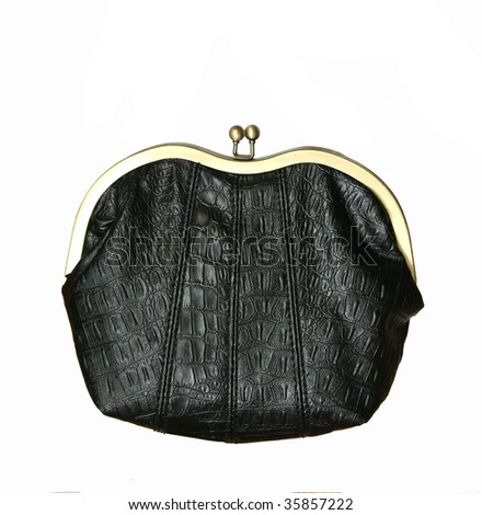 vintage change purse isolated