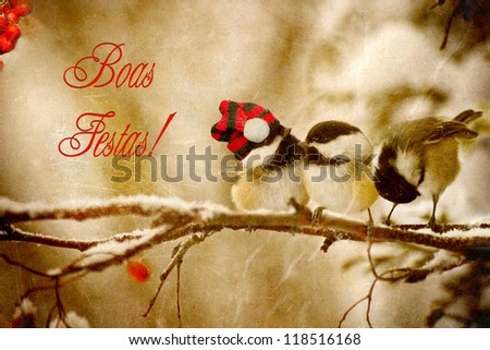 Vintage Christmas card with adorable chickadees in the snow with Portuguese language text-Boas Festas!
