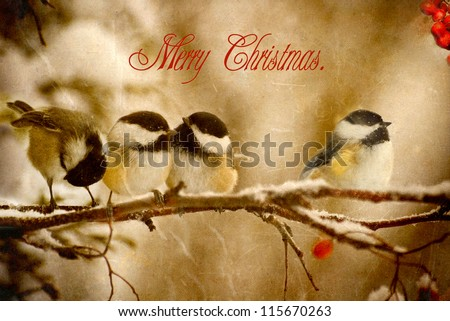 Vintage Christmas card with adorable chickadees in the snow with text, Merry Christmas.