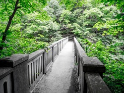 Vintage concrete foot bridge connecting hiking trails over the river at the famous Matthiessen State Park in the Lower Dells in Illinois looking across the bridge with maple trees and green foliage
