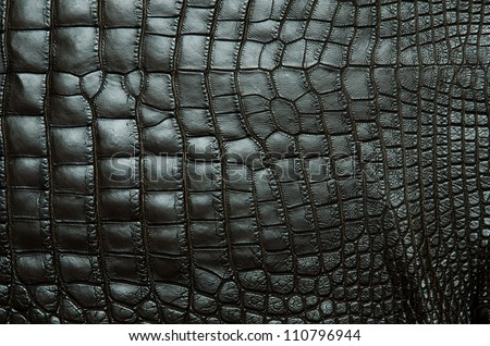 Vintage crocodile belly skin texture background.