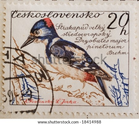 Vintage Czechoslovakian postage stamp with Great Spotted Woodpecker