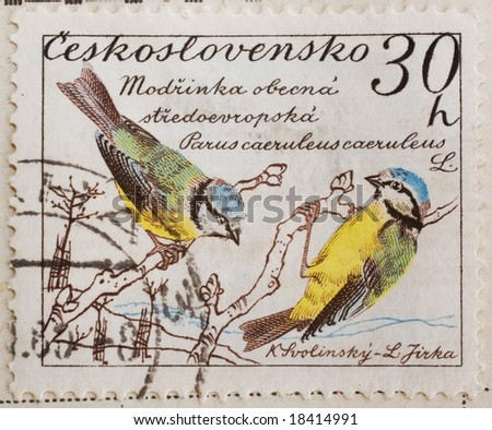 Vintage Czechoslovakian postage stamp with two blue tits (parus caeruleus)