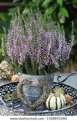 vintage decoration with heather heart and heather flower #1508892680