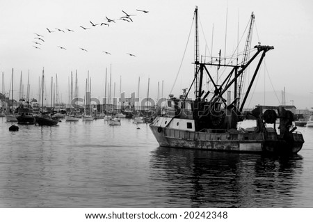 Vintage fishing boat in harbor