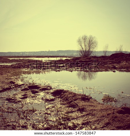 vintage flood  landscape in...