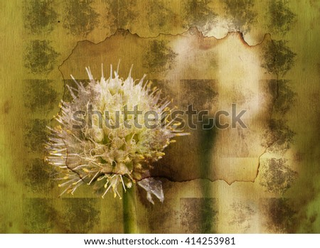 Vintage flowers collage  Art floral background with paper