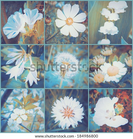 Vintage floral collage of various flowers Art floral background with paper texture overlay Retro style