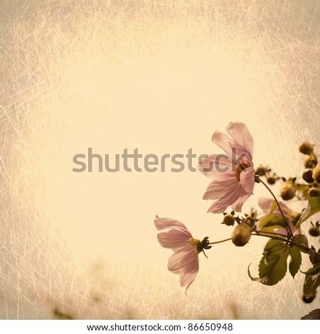 Vintage flowers