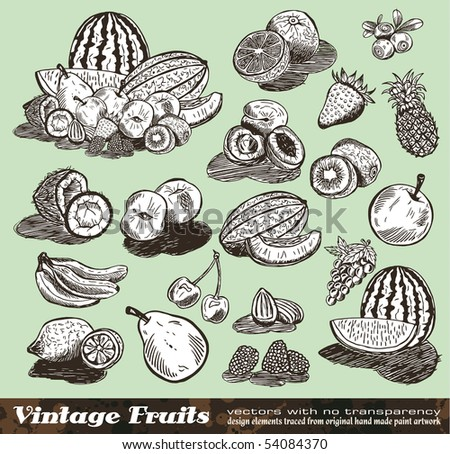 Vintage Fruits Collection - Set of Various Design Elements created from original hand draw - stock photo