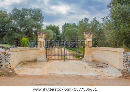 Vintage gate to olive orchard