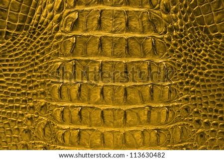 Vintage Gold Crocodile Bone Skin Texture Background.