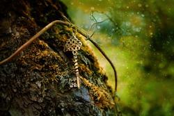 vintage golden key in mystery forest, natural green summer background. magical beautiful key, symbol of secret garden. secrecy, mystique, Arcanum concept
