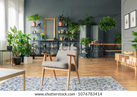 Vintage, gray armchair in the center of a tropical living room interior with lots of plants on the wooden floor and black rack