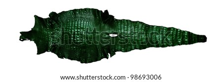 Vintage Green crocodile belly skin texture isolated full pattern, with clipping path.