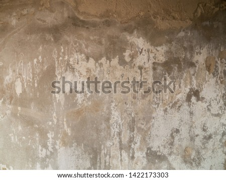 Vintage grungy Cement wall background texture #1422173303