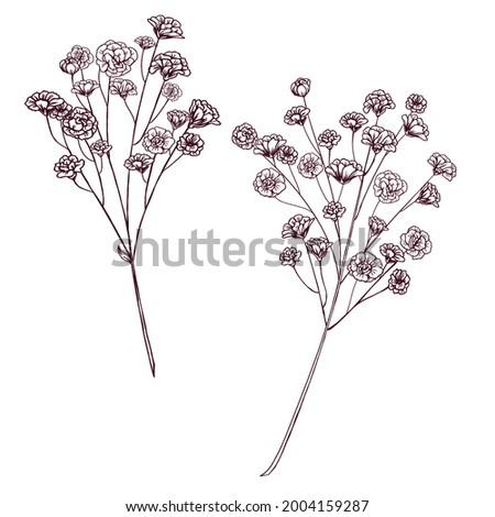 Vintage gypsophila wedding flower decoration, rustic wedding design element, forest, woodland wedding design element, retro botanica Foto d'archivio ©