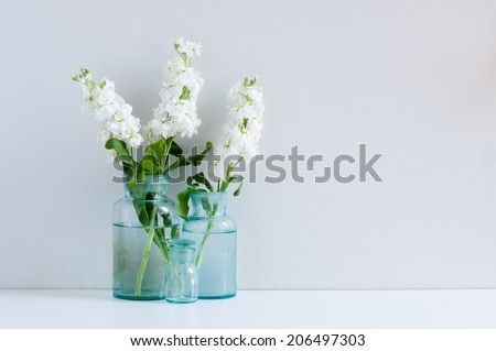 Vintage home decor background, white matthiola flowers in different blue glass bottles vases on a shelf by the wall #206497303